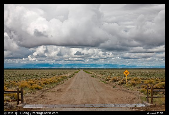 Cattle guard and straight dirt road. Colorado, USA (color)
