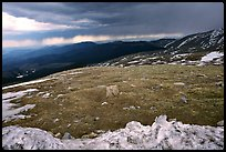 Snow and tundra on Mt Evans. Colorado, USA