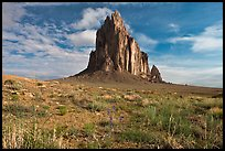 Wildflowers and Shiprock. Shiprock, New Mexico, USA