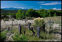 Woden crosses, cemetery, Picuris Pueblo. New Mexico, USA ( color)