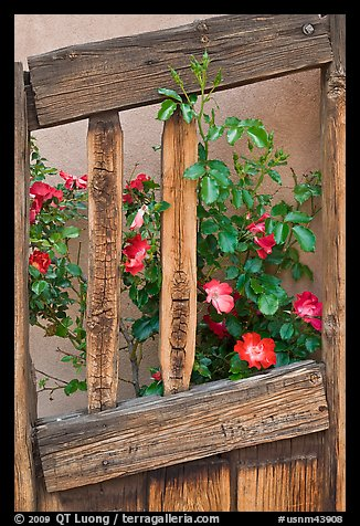 Roses and wooden doors, Sanctuario de Chimayo. New Mexico, USA (color)