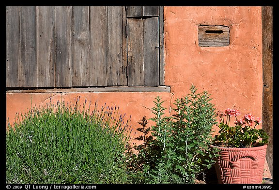 Flowers, mailbox, and weathered window. Santa Fe, New Mexico, USA