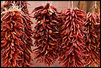 Ristras for sale. Santa Fe, New Mexico, USA ( color)