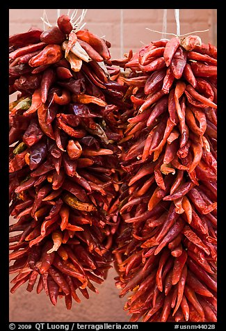 Strings of red peppers for sale. Santa Fe, New Mexico, USA (color)