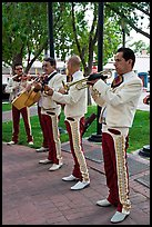 New Mexico mariachi. Albuquerque, New Mexico, USA ( color)