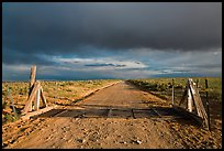 Cattle guard and unpaved road. New Mexico, USA