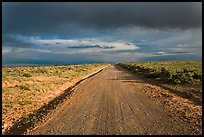 Primitive road under dark sky. New Mexico, USA