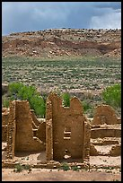 Ruined pueblo and cottonwoods trees. Chaco Culture National Historic Park, New Mexico, USA