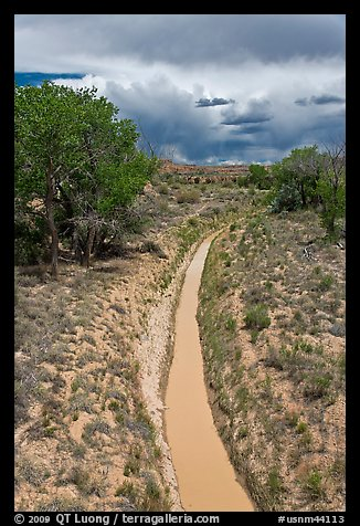 Chaco wash in the spring. Chaco Culture National Historic Park, New Mexico, USA (color)