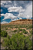 Canyon floor, cliffs, and clouds. Chaco Culture National Historic Park, New Mexico, USA