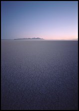 Flat playa with thin mud cracks, Black Rock Desert. Nevada, USA