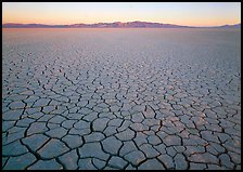 Cracked mud flat at sunrise, Black Rock Desert. Nevada, USA