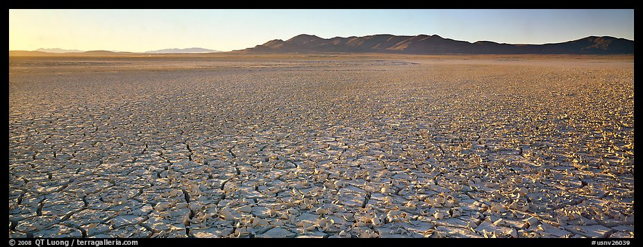 Dry lake bed landscape. Nevada, USA (color)