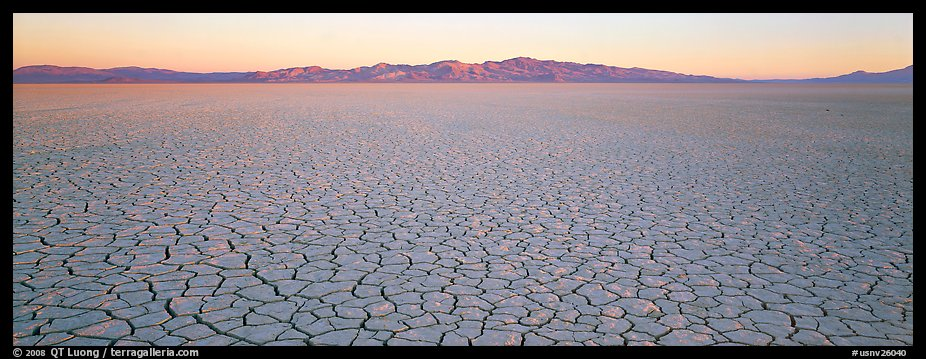 Desert landscape with cracked mud. Nevada, USA (color)