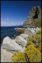 Sagebrush and Cave Rock, Lake Tahoe, Nevada. USA