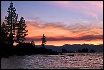 Shoreline with pine trees and rocks, Sand Harbor, East Shore, Lake Tahoe, Nevada. USA ( color)