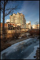 Truckee River in winter. Reno, Nevada, USA ( color)