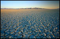 Ancient lakebed with cracked dried mud, sunrise, Black Rock Desert. Nevada, USA ( color)
