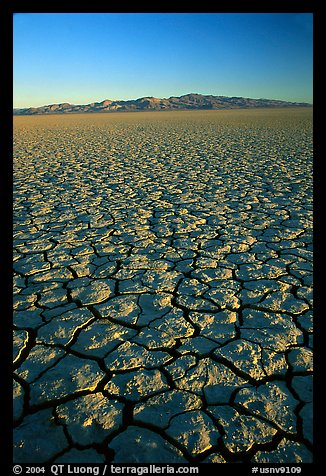 Dry Lakebed  with cracked dried mud, sunrise, Black Rock Desert. Nevada, USA (color)