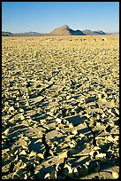 Playa with peeling dried mud, early morning, Black Rock Desert. Nevada, USA ( color)