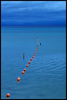 Orange Buoy line, blue hour, South Lake Tahoe, California. USA