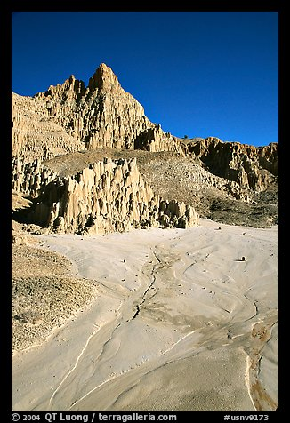 Mud plain below erosion spires, Cathedral Gorge State Park. Nevada, USA (color)