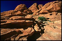 Red sandstone formations, Red Rock Canyon. Red Rock Canyon, Nevada, USA (color)