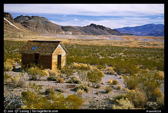 Cabin, Rhyolite ghost town. Nevada, USA