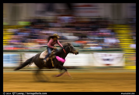 Woman riding horse in speed contest, Stokyards Championship Rodeo. Fort Worth, Texas, USA (color)
