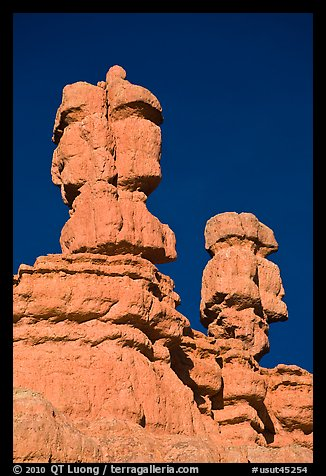 Hoodoos, Red Canyon, Dixie National Forest. Utah, USA (color)