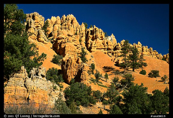Hoodoos, Red Canyon, Dixie National Forest. Utah, USA