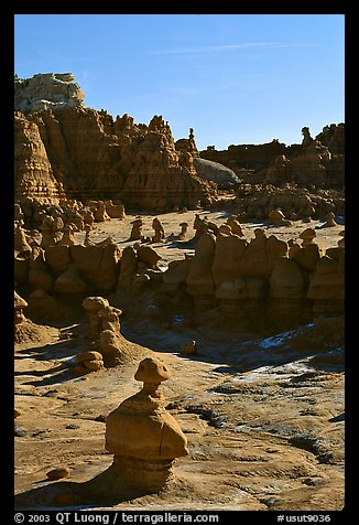 Goblins, early morning, Goblin Valley State Park. Utah, USA (color)