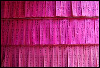 Prayer labels with names written in Chinese characters. Cholon, District 5, Ho Chi Minh City, Vietnam (color)
