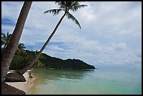 Palm-fringed beach, Bai Sau. Phu Quoc Island, Vietnam (color)