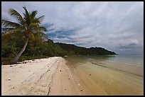 Palm-fringed tropical sandy beach, Bai Sau. Phu Quoc Island, Vietnam ( color)