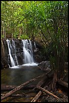 Suoi Tranh tropical waterfall. Phu Quoc Island, Vietnam (color)