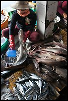 Woman cleans up fish for sale, Duong Dong. Phu Quoc Island, Vietnam (color)
