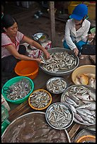 Customer purchasing fish at market, Duong Dong. Phu Quoc Island, Vietnam ( color)
