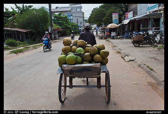 Cyclo carrying coconuts, Duong Dong. Phu Quoc Island, Vietnam (color)