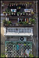 Windows with potted plants and laundry. Ho Chi Minh City, Vietnam ( color)