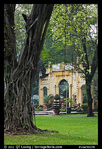 Banyan tree and gate, Cong Vien Van Hoa Park. Ho Chi Minh City, Vietnam (color)