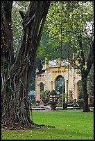 Banyan tree and gate, Cong Vien Van Hoa Park. Ho Chi Minh City, Vietnam ( color)