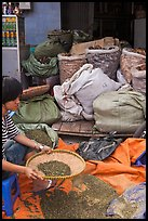 Woman preparing traditional medicine ingredients. Cholon, Ho Chi Minh City, Vietnam (color)