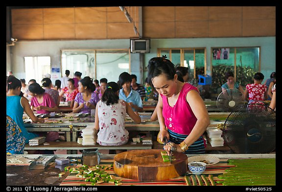 Woman cutting strips of coconut candy in factory. Ben Tre, Vietnam (color)