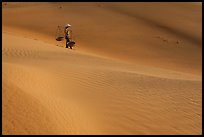 Woman with conical hat and yoke baskets pauses on sand dunes. Mui Ne, Vietnam (color)