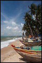 Palm-fringed beach with fishing boats. Mui Ne, Vietnam (color)