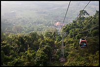 Cable car, tree canopy and plain. Ta Cu Mountain, Vietnam (color)