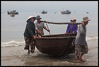 Fishermen carry round woven boat to shore. Mui Ne, Vietnam ( color)
