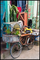 Altar on bicycle. Can Tho, Vietnam (color)