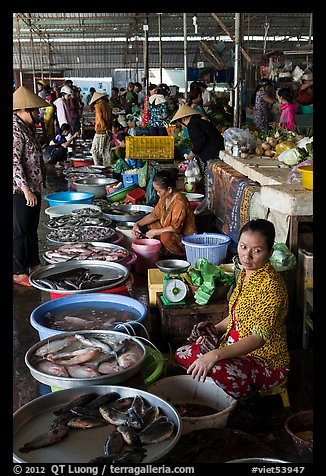 Fishmongers, Cai Rang. Can Tho, Vietnam (color)